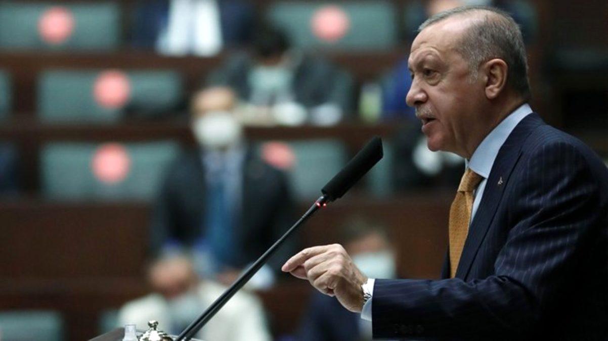 Erdoğan çirkin karikatür için ne dedi