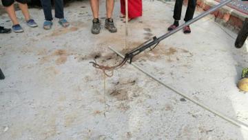 Fethiye'de yılan paniği! Tam 2 metre uzunluğunda…